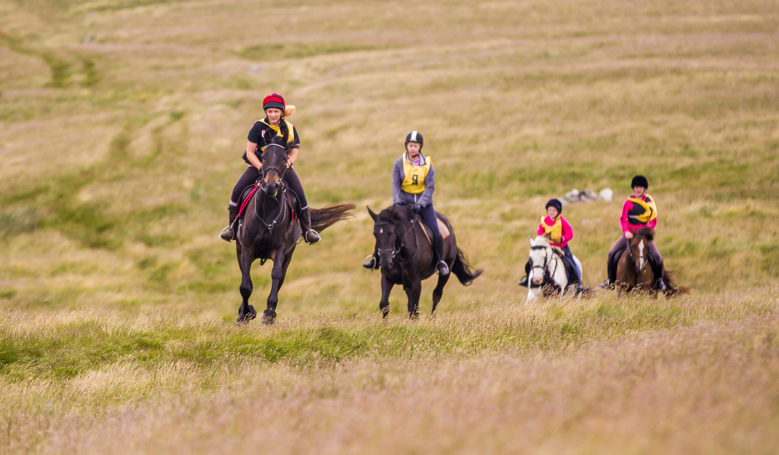 Stanhope EGB Equestrian Horse Pleasure Ride Event Marimages Photography